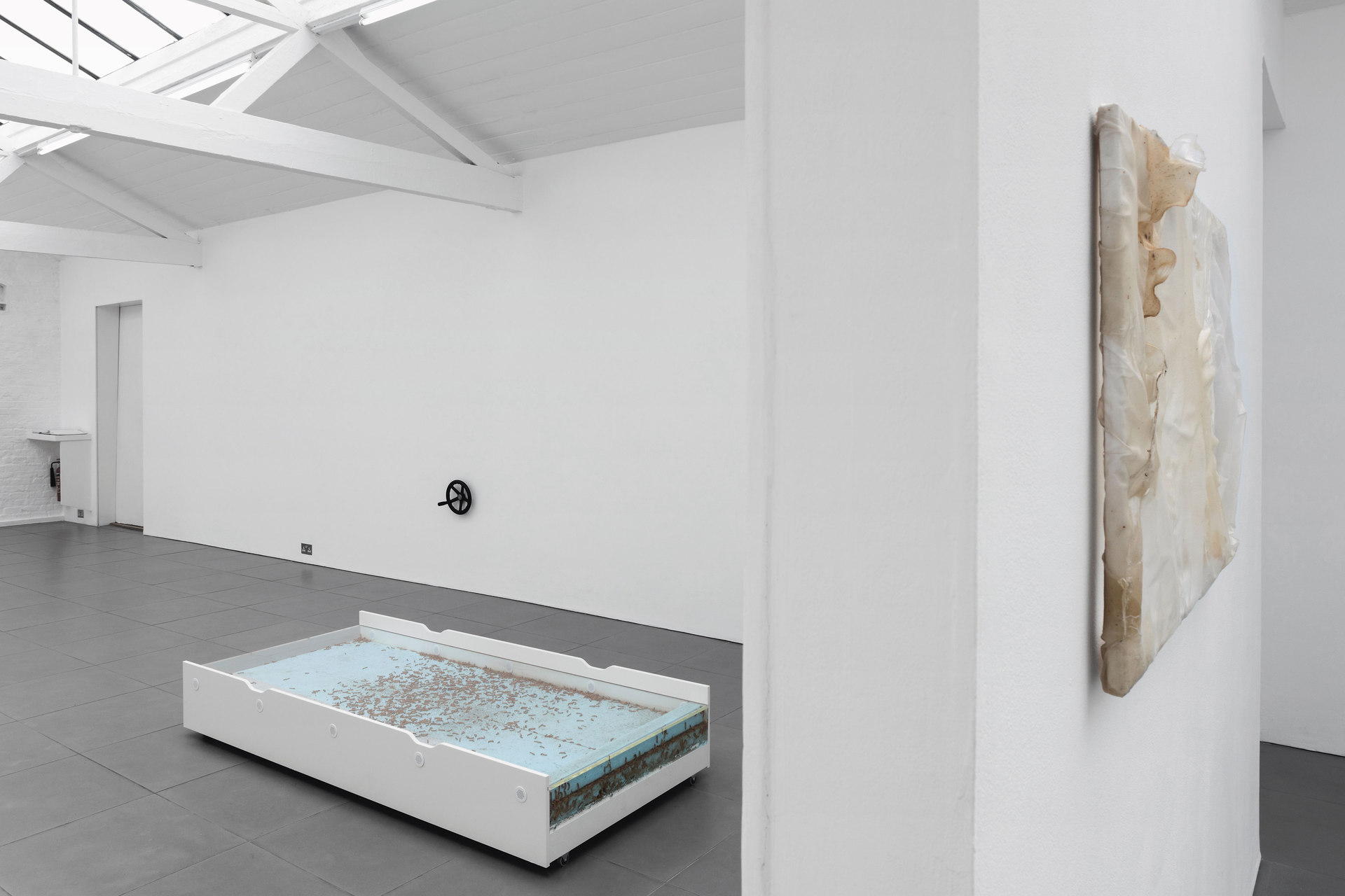 Aude Pariset, GREENHOUSES, installation view, 2016, Cell Project Space