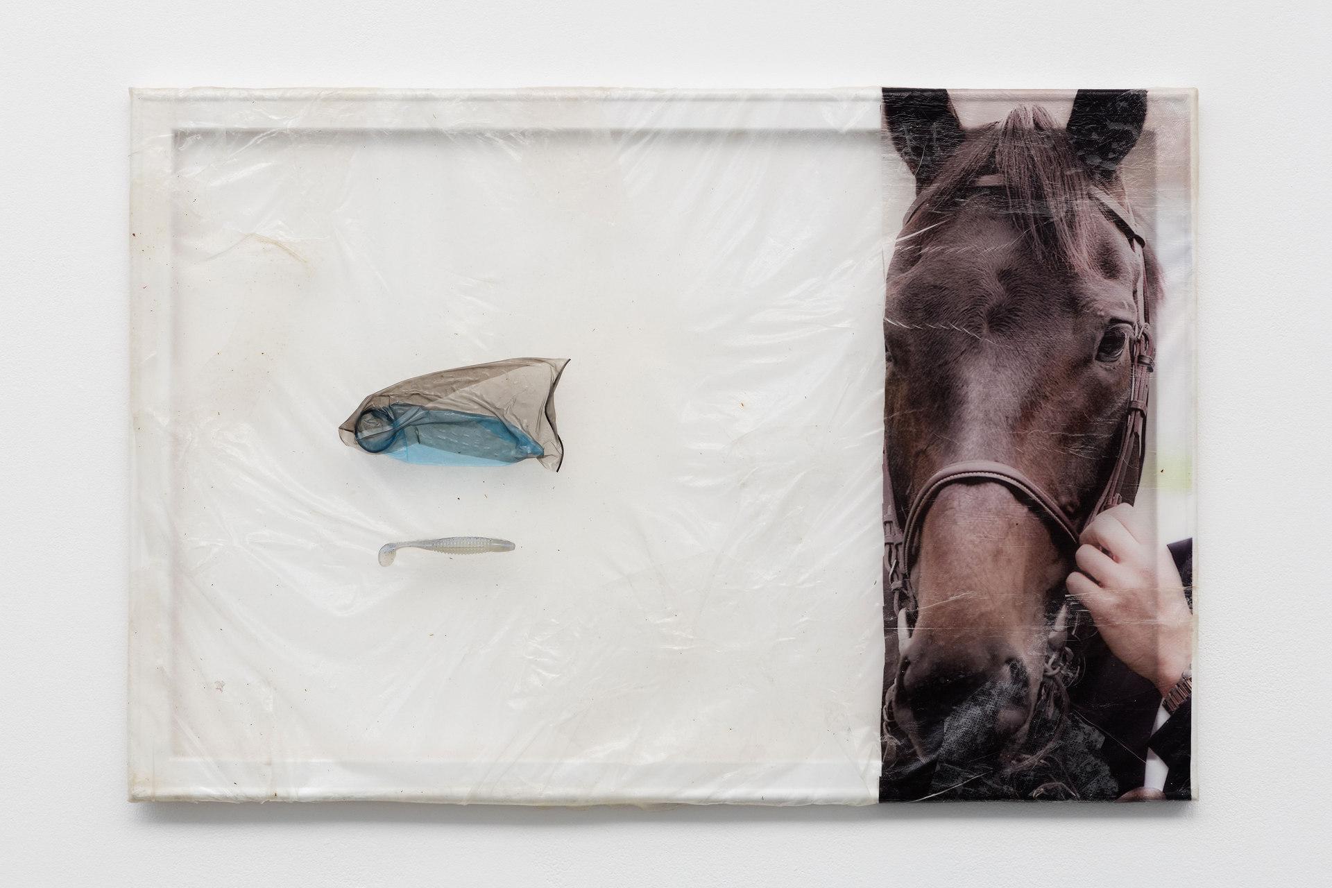 Aude Pariset, GREENHOUSES, 'Stallion Dad', Bioplastic, UV print on bioplastic, condoms, fish bait, wood, paint, 60 x 90cm, 2016, Cell Project Space