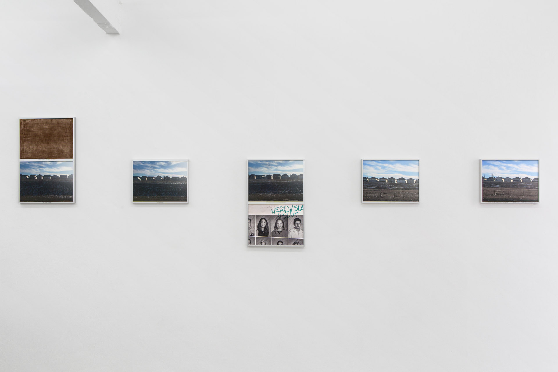 Rosa Aiello, 'Progression (Harvest Hills – Coventry Hills)', 2019, Digital print, photo rag paper, acetate film, glue, upholstery fabric, aluminium frames Series of 11, 31.2 x 41.2cm, or 62.4 x 41.2cm each, Cell Project Space
