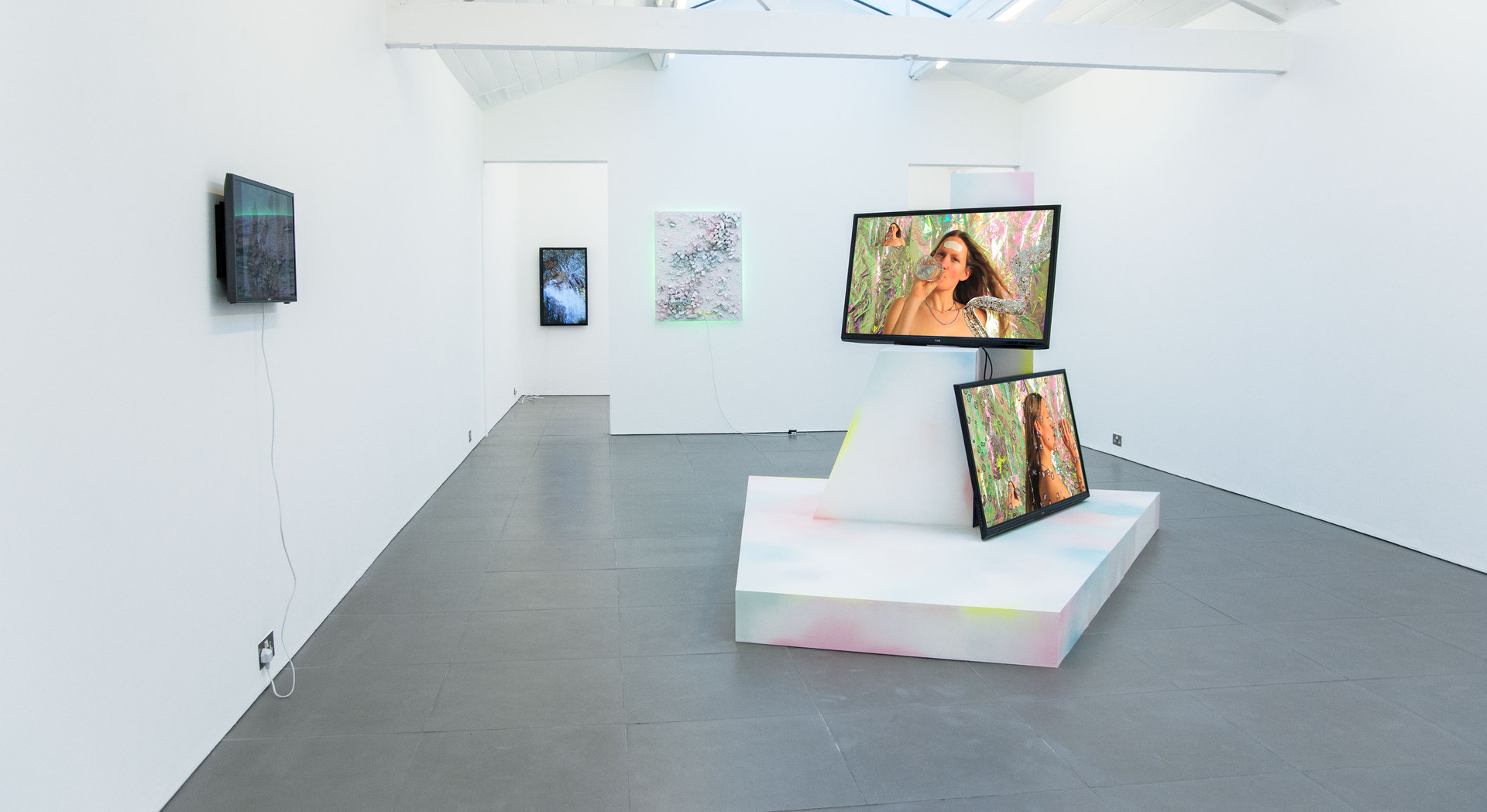 Adham Faramawy, HYDRA installation view, Cell Project Space, 2014