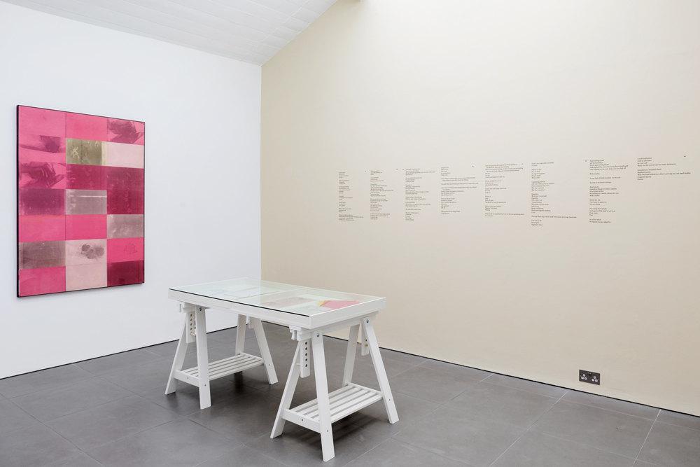 Barbara T. Smith, Pink, 1965,  Xerox prints,  150 × 100 cm vitrine: Barbara T. Smith, Rebellion, Joy, The Poetry Sets, 1965-1966  Xerox prints  Dena Yago, Standard Remote, 2011–2015  vinyl wall text, paint, Cell Project Space