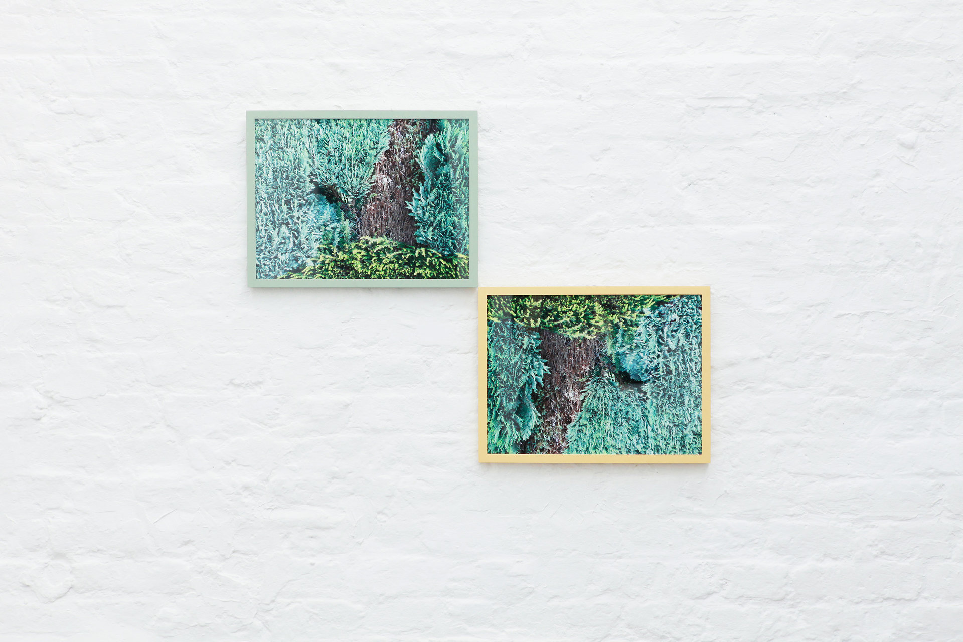 Cornelia Baltes, Baccara, 2012, Edition 1/3 + 2 artist prints, 60 x 70 cm, Giclee print in painted frame, Cell Project Space