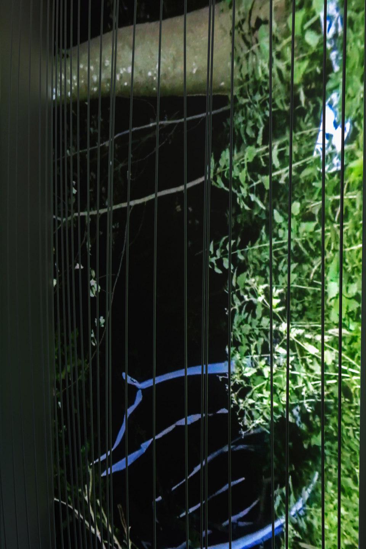 Dan Walwin, Detail Winds 3, 2015 Sculpture, video, Cell Project Space
