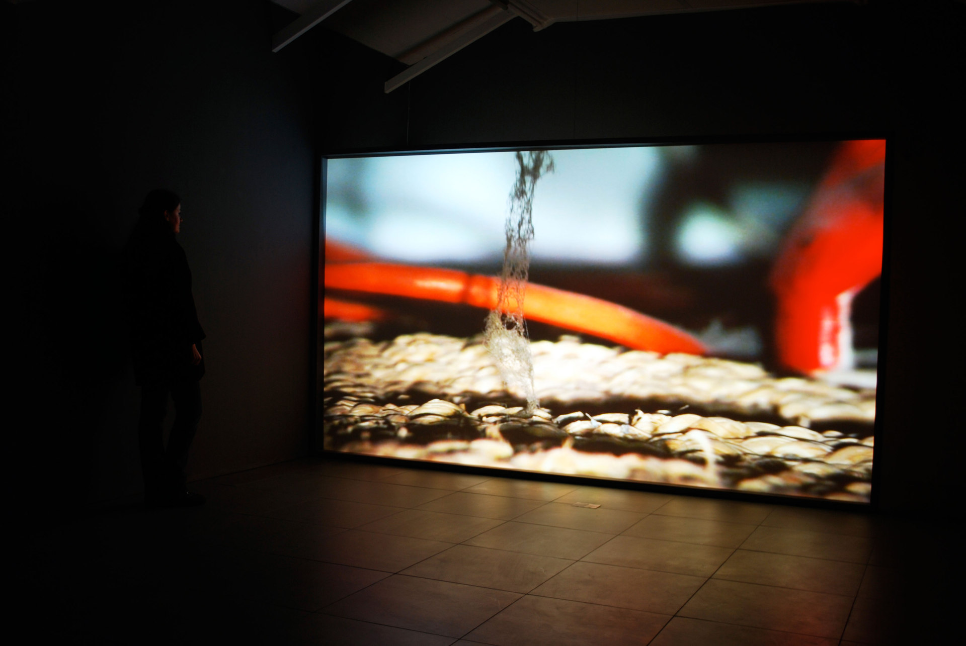 Emma Hart, JAM, 'LOST', 2009-2011, digital projection, Cell Project Space