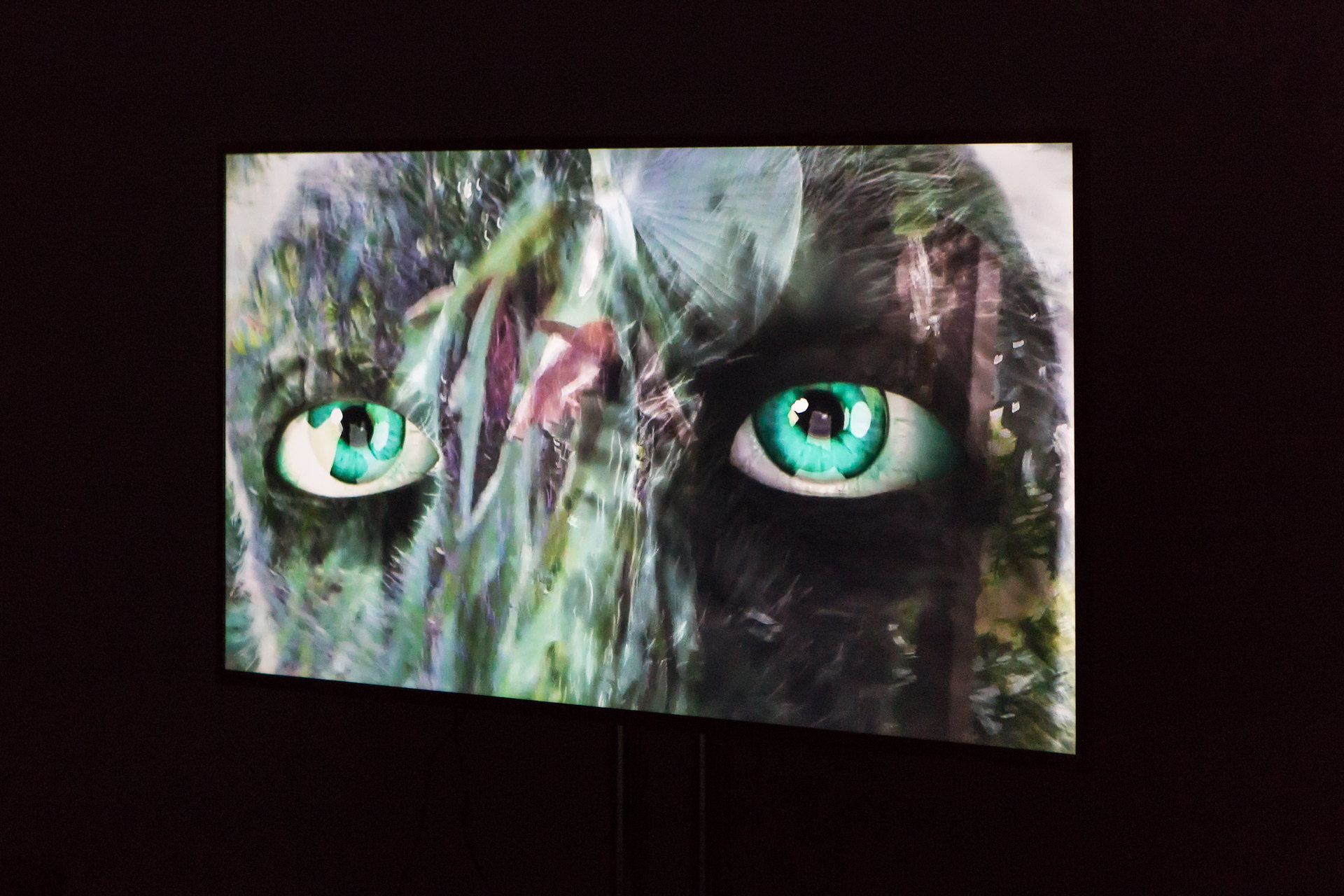 Natalie Price Hafslund & Laura O'Neill, Performance have no mouth and i must scream, Cell Project Space, 2017