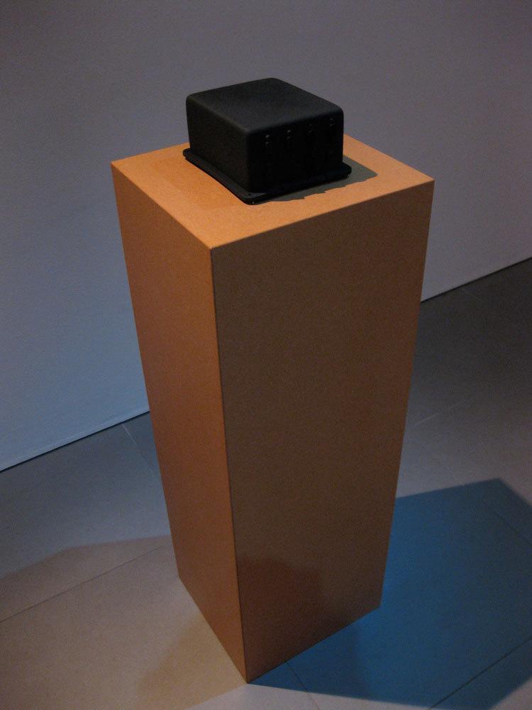 Mariele Neudecker 'Final Fantasy (flight recorder)', 2008, fibreglass, acrylic paint, MDF