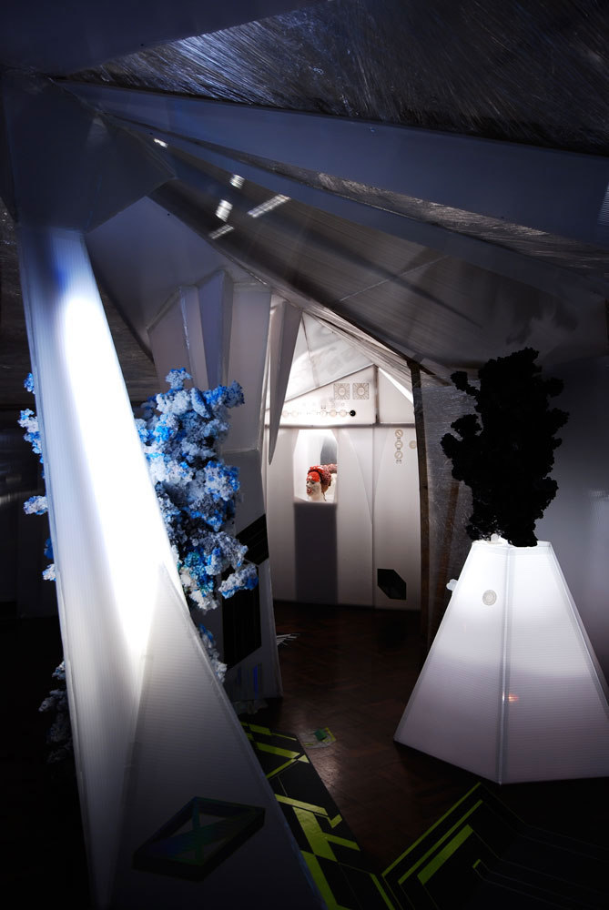 Richard Priestley, Installation 'Straylight Cavern 2009', Mixed Media