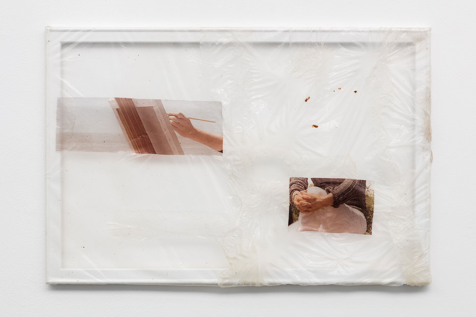 Aude Pariset, GREENHOUSES, 'Green Nuclear Family no 2', Bioplastic, UV print on bioplastic, mealworm skin, Lexomil, wood, paint, 60 x 90cm, 2016, Cell Project Space