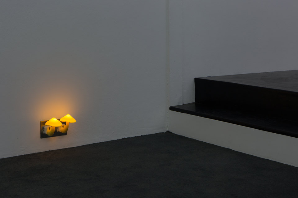 Shrooms, 2016, Ghislaine Leung, Cell Project Space