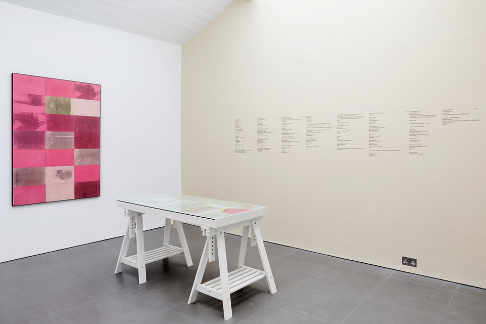 Barbara T. Smith, Pink, 1965,  Xerox prints,  150 × 100 cm vitrine: Barbara T. Smith, Rebellion, Joy, The Poetry Sets, 1965-1966  Xerox prints  Dena Yago, Standard Remote, 2011–2015  vinyl wall text, paint, Cell Project Space
