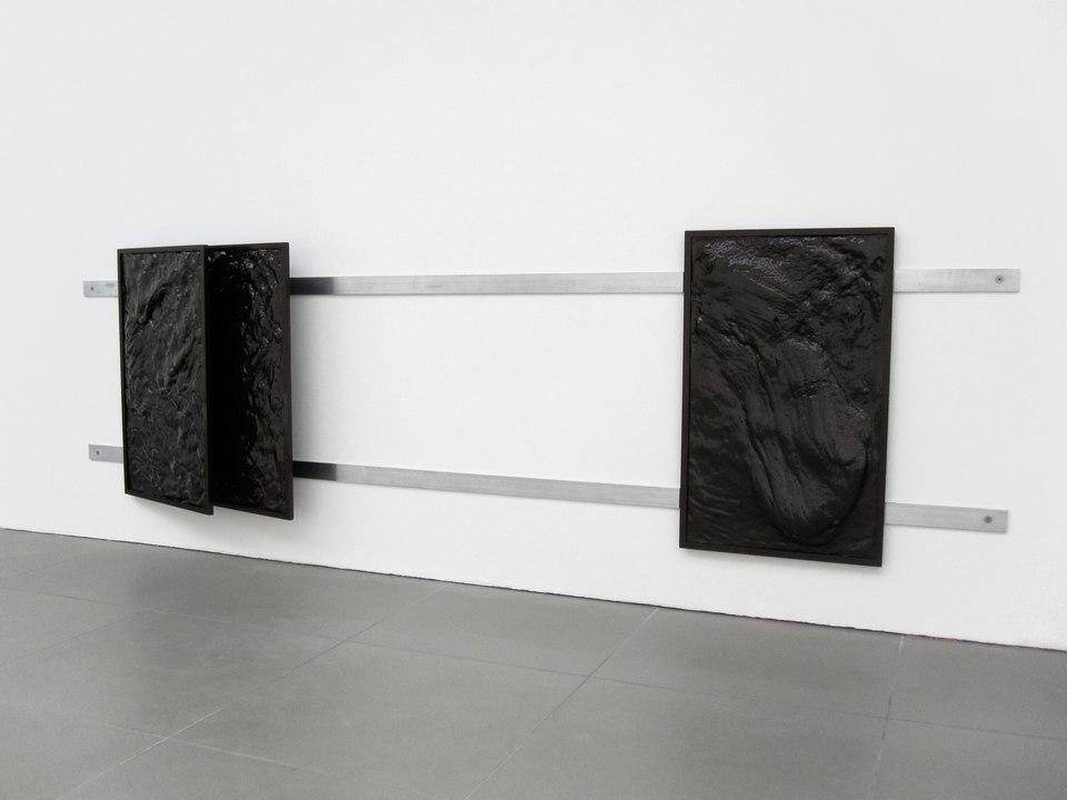 Nicolas Deshayes, Collective Naturals, 2011, Vacuum formed plastic, powder-coated alumnium, neoprene foam and machine screws, (220cm x 55cm x 15cm), Cell Project Space
