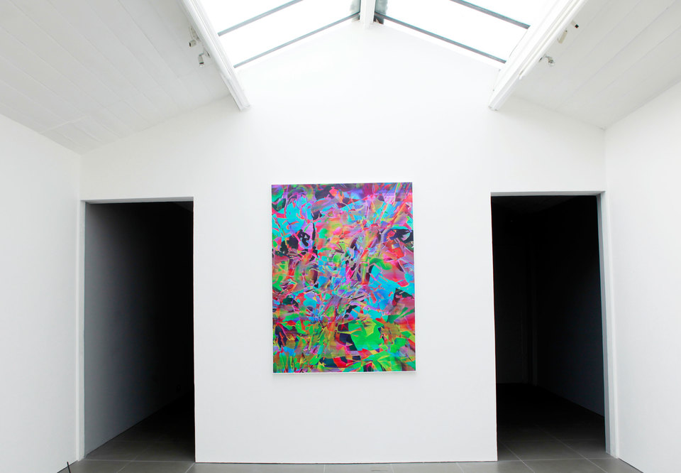 Travess Smalley, Alta Dark, 2012, 173 x 140 cm, Digital print on silk, Cell Project Space