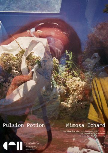 Pulsion Potion, Mimosa Echard